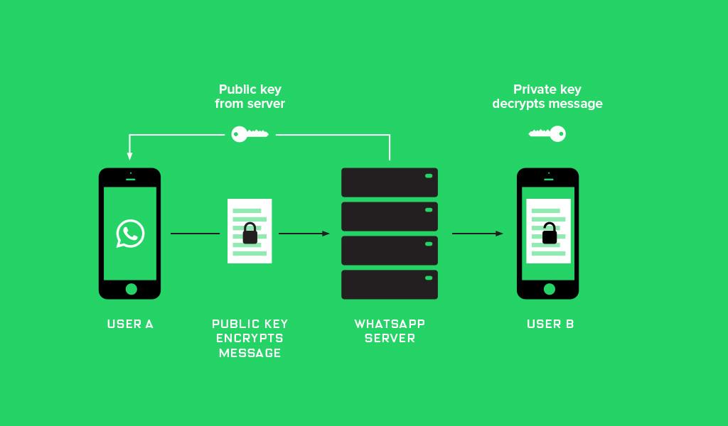 Whatsapp_Encryption_Proxima-1024x600