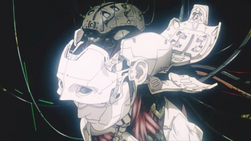 Ghost In The Shell X The Ant And The Grasshopper Iris Bh