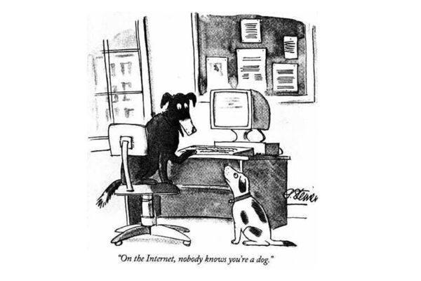 Dog on internet